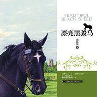 安娜·塞维尔:漂亮黑骏马