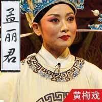 黄梅戏·孟丽君(全本)