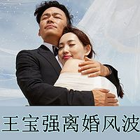 王宝强离婚风波