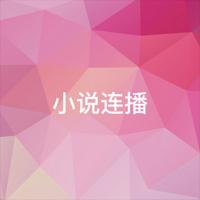 小说连播(广东南方生活广播)