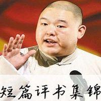 王玥波短篇评书集锦
