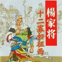 祁永亮评书:杨家将之十二寡妇征西