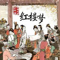 台湾大学公开课:红楼梦
