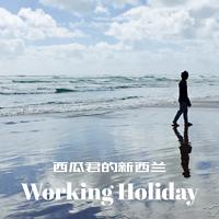 新西兰打工度假