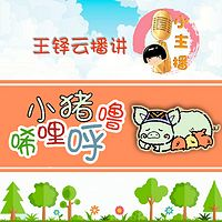 小猪唏哩呼噜【小主播:王铎云】