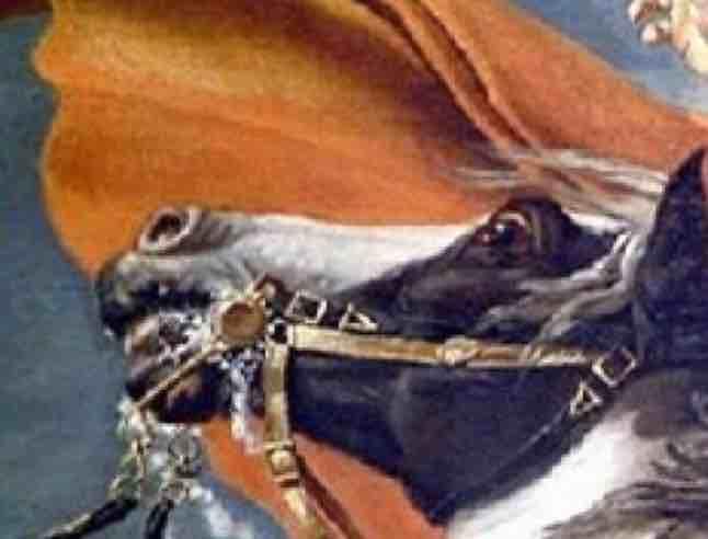 拿破仑五世
