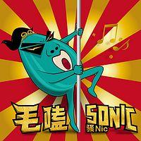 毛嗑Sonic