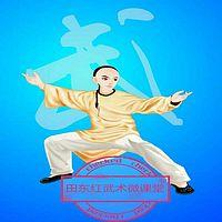 田东红武术微课堂