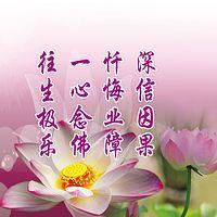 【佛陀教育音乐系列 大乘佛法-因果教育环城绕佛】