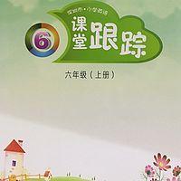 【课堂跟踪】深圳小学英语6A