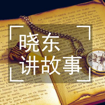 晓东讲故事-大案追踪