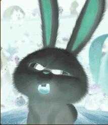 播音这爱吃兔子