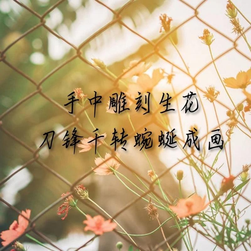 小熊- ̗̀(๑ᵔ⌔ᵔ๑)