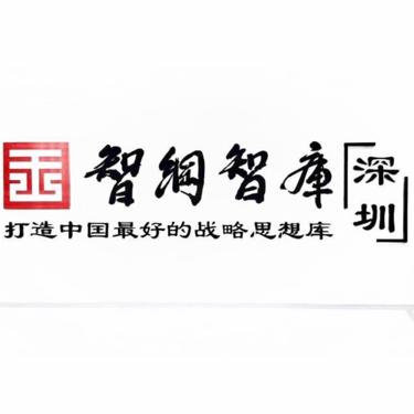 智纲智库深圳战略中心