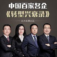 中国百家名企转型兴衰录