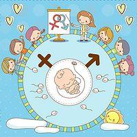 备孕篇|备孕夫妻应该如何科学备孕?