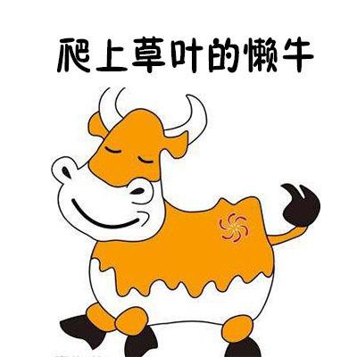 爬上草叶的懒牛