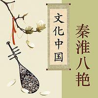 秦淮八艳【全集】(剪辑版)