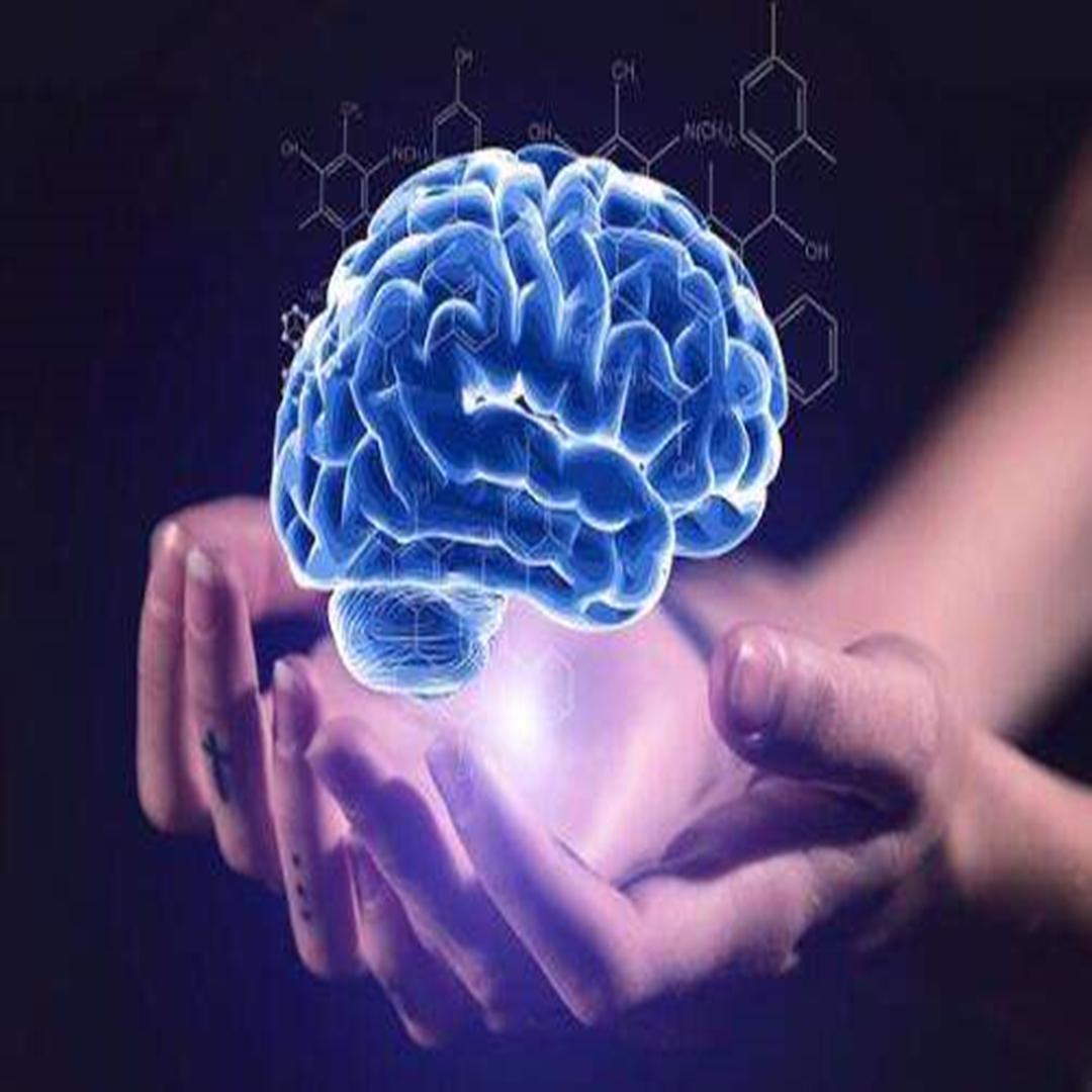 右脑记忆力导师