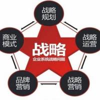 王紫杰:企业战略体系设计