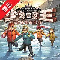 少年冒险王系列:大雪山里的狼娃