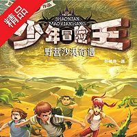 少年冒险王系列:野营沙漠奇遇