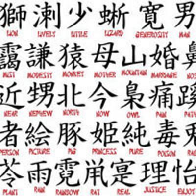 在武汉大学说文解字
