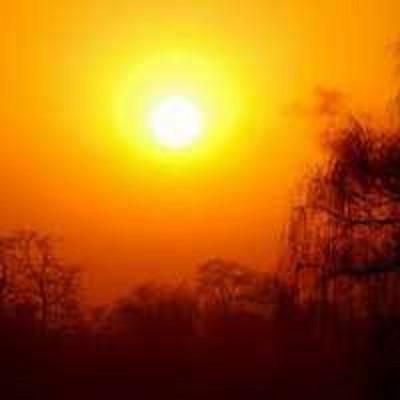 周德东:请抬头看看夕阳