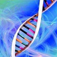 基因:人类新武器