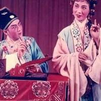 黄梅戏·潘璟琍专辑