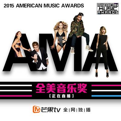 2015AMA全美奖