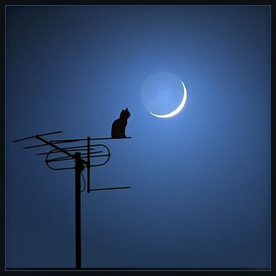 夜晚听故事
