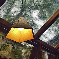 贝卡的树屋