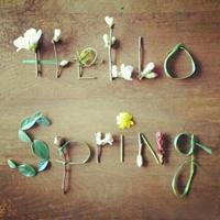 你好,春天小姐