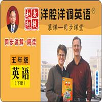 陕旅五年级英语下册