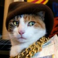 猫爵士自信恋爱心态公开课