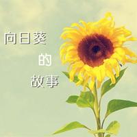 向日葵的故事