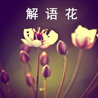 解语花的云