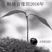 桐城音像馆2016年