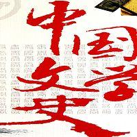 南大教授讲中国文学