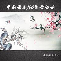 兜兜爸读古文——中国最美100首古诗词