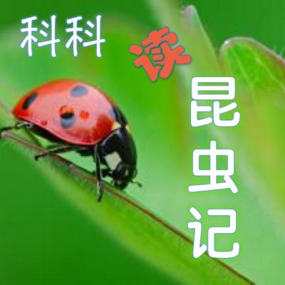 科科读《昆虫记》