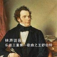 林声说音乐--乐迷三重奏 歌曲之王舒伯特