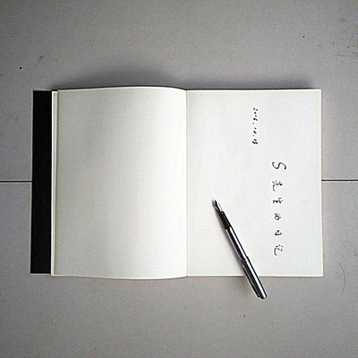 小S先生的日记