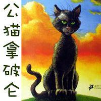 彩乌鸦系列—公猫拿破仑