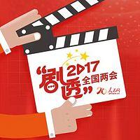 人民网2017全国两会