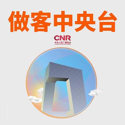 做客中央台2017