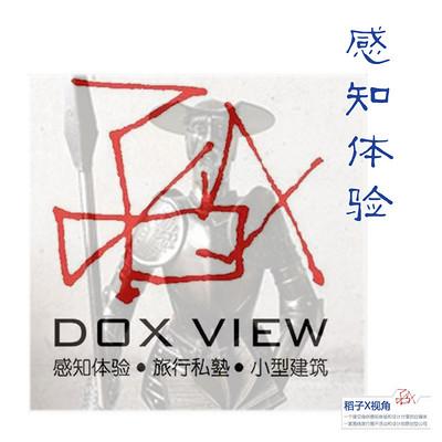 稻子X视角---感知体验