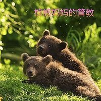 棕熊妈妈的管教