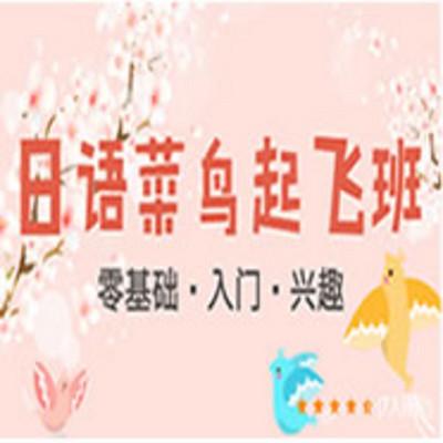 【日语学习】零基础日语快速入门班